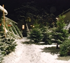 Baumverkauf im Schnee