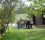 Gruppenarbeit im Sonnenschein
