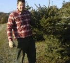 Selbst geschlagener Tannenbaum
