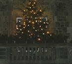Baum am Rathaus Wetter, nächtliche Beleuchtung
