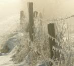 Winterliche Idylle am Hof